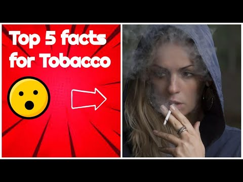 Top 5 facts tobacco | amazing facts | facts 2021 | facts in hindi #shorts