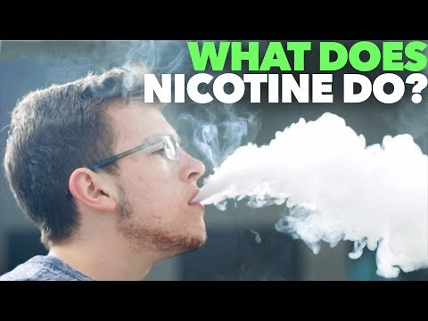 What does nicotine do? zb vape school