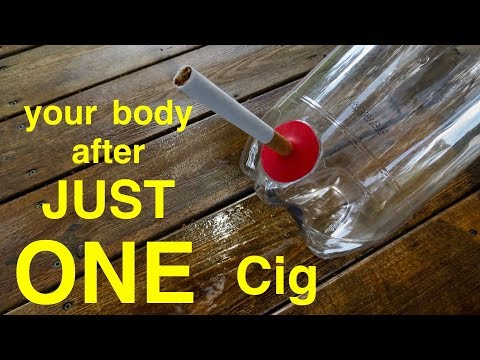 How smoking just 1 cigarette affects your lungs ● you must see this !