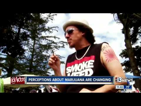 New study says american families think marijuana is healthier than tobacco and alcohol