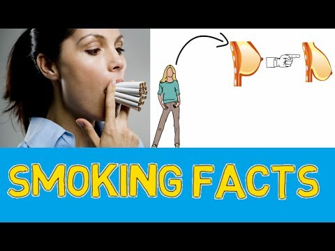 Facts about smoking