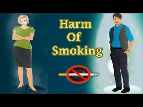 Harmful effects of tobacco on the human body, educational video for children