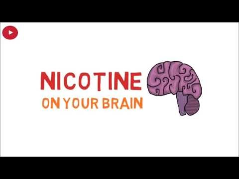 Effects of nicotine on your brain