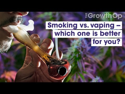 Smoking vs. vaping, which one is better for you? | weed easy