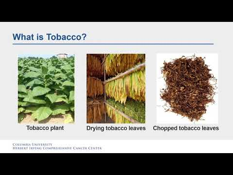 Tobacco, risks of use, and cancer